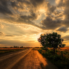 sunset on the road by Cornelius D - Landscapes Sunsets & Sunrises