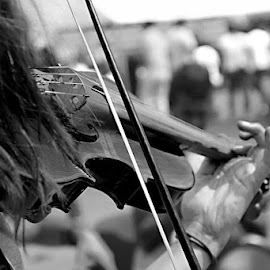swing and tune by Ito Nugroho - People Musicians & Entertainers