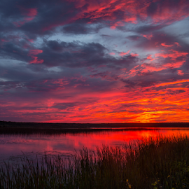 Sunset - Tiny Marsh by Tim Harding - Landscapes Sunsets & Sunrises ( orange, red, nature, sunset, summer, landscape )