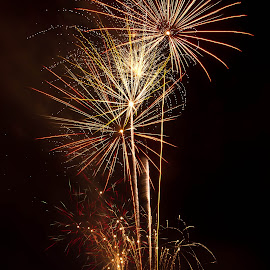 The Fourth by Brenda Hooper - Abstract Fire & Fireworks ( abstract, 4th of july, fireworks, gold, independence day, black, fire,  )
