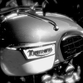 Triumph by David W Hubbs - Transportation Motorcycles ( motorbike, black and white, classic motorcycle, old bike, motorcycle, gas tank, triumph )