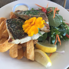 Fish and chips with Salad, YUM by Dawn Simpson - Food & Drink Plated Food ( salad, chips, healthy, fish, fish and chips, summer food,  )
