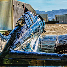 Douglas SBD5 Dauntless ready to roll by Tom Anderson - Transportation Airplanes ( aviation, california, 2011, chino, planes of fame )