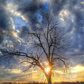 Well hello, Mr. Sun! by Jeremy Rose - Landscapes Sunsets & Sunrises