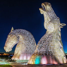 The Kelpies by Andy Stark - Buildings & Architecture Statues & Monuments ( kelpies, night photography, forth & clyde canal, the helix, falkirk, long exposure )