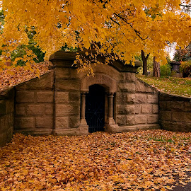 Fall by Carl Chalupa - City,  Street & Park  Cemeteries ( fall, crypt, mount pleasant cemetery )