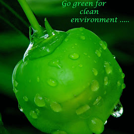 GO GREEN by SANGEETA MENA  - Typography Quotes & Sentences