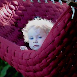 by Keith Sutherland - Babies & Children Children Candids ( hadley, hammock )