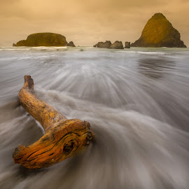 by John Sharp - Landscapes Waterscapes ( oregon coast 2015,  )