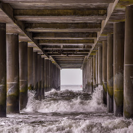 Under the Boardwalk by Diane Ljungquist - Landscapes Beaches