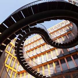 Impossible Staircase, Munich by Lori Rider - Buildings & Architecture Architectural Detail