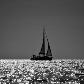 My way by Milena Radić - Black & White Objects & Still Life ( #blackandwhite #sailing #sea #sunset,  )