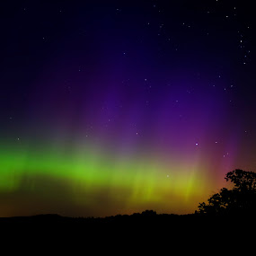 Beautiful Wisconsin Auroras  by Brett Wright - Landscapes Starscapes ( wisconsin, auroras, stars, colors, northern lights, pillairs, space, landscapes )