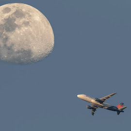 Moon Fly-By by Jay Stout - Transportation Airplanes