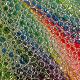 Bubble Paths by Janet Herman - Abstract Macro ( abstract, macro, colors, bubbles, reflections )