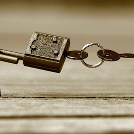 Little Lock  by Abbey Gatto - Artistic Objects Other Objects