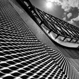 Cheese Grator by Adrian Campfield - Black & White Buildings & Architecture ( monochrome, abstracts, diagonals, black and white, archtecture, dark, lines, light, mono, shadows, curves, structures )
