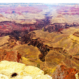 Grand View 4 by David Walters - Landscapes Travel ( az, nature, grand canyon national park, lumix fz200, landscape, rocks )