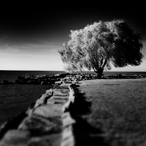 Tranquility of Solitude by Christopher Gray - Instagram & Mobile iPhone ( lake erie )