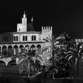 palacio real la almudaina, Palma de Mallorca by Roberto Gonzalo Romero - Buildings & Architecture Public & Historical ( real, black and white, palacio, almudaina, mallorca, palma )