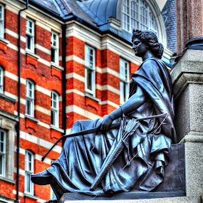 statue near albert hall by Mohd Aidy Faizal Johari - Buildings & Architecture Statues & Monuments
