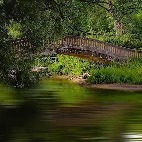 Centre Island , Toronto by Arda Erlik - Landscapes Forests ( canada, toronto, centre island, ontario, bridge, travel )