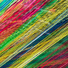 Colorful strings by Elaine Baylon - Abstract Patterns ( colors, colorful )