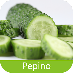 Pests Pepino