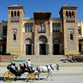 Seville, Spain by Francis Xavier Camilleri - City,  Street & Park  Historic Districts