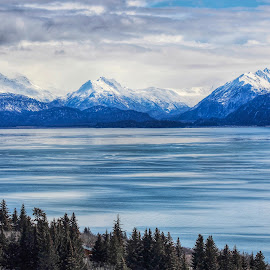 Kachemak Bay  by Patricia Phillips - Landscapes Travel ( alaska homer kachemak )
