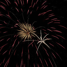 by Liz Huddleston - Abstract Fire & Fireworks ( wow, fourth of july, montana, independence, fireworks, bang )