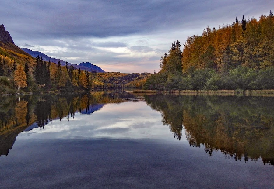 Autumn Reflections by Patricia Phillips - Landscapes Travel ( alaska lakes reflections autumn )