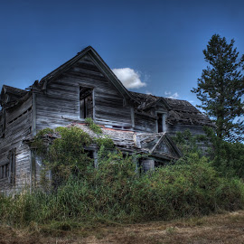 Melrose Place by Eric Demattos - Buildings & Architecture Decaying & Abandoned ( farm, overgrown, cottage, house, antique, abandoned )