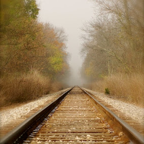 Foggy Train Tracks by Of-the-Star Designs - Transportation Other ( train tracks, foggy, railroad tracks, fog, fall, trains )