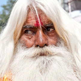 India by Diego Scaglione - People Portraits of Men ( looking, white, beard, hair, man )