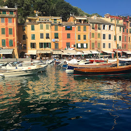 Beautiful Camogli Italy by Dana Styber - Landscapes Travel ( waterscape, colorful, camogli, buildings, travel, architecture, landscape, italy, cruise )