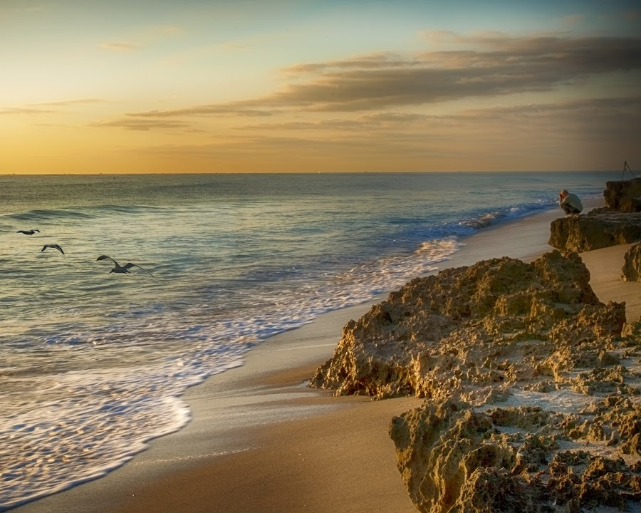 Photographing the Sunrise at Coral Cay by Sandy Friedkin - Landscapes Beaches ( calm, coral cay, photographer, ocean, beach, sunrise )