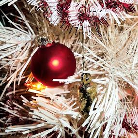 Ornamenta by Doug Maertz - Public Holidays Christmas