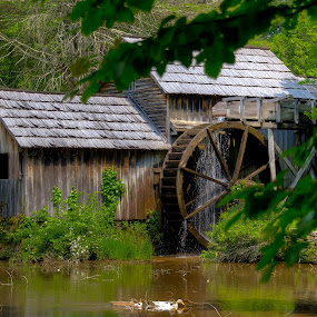 Mabry Mill by Randell Whitworth - Landscapes Waterscapes