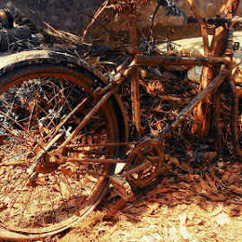 Parked and Forgot by Prince Frankenstein - Transportation Bicycles ( rusted, bicycle,  )