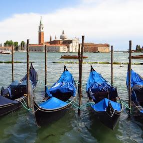 Venice! by Randi Hodson - City,  Street & Park  Vistas ( venice,  )