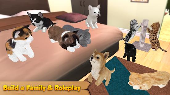 Cat & Dog Online: Pet Animals