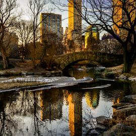 Central Park by Joseph Law - City,  Street & Park  City Parks ( melting, snow, buildings, trees, reflections, bridge, new york, central park, rocks, spring )