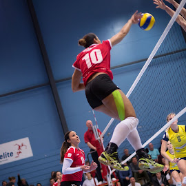 Smash by Flemming Nielsen - Sports & Fitness Other Sports ( volleyball, indoor sports, lyngby, smash, indoor volleybal )