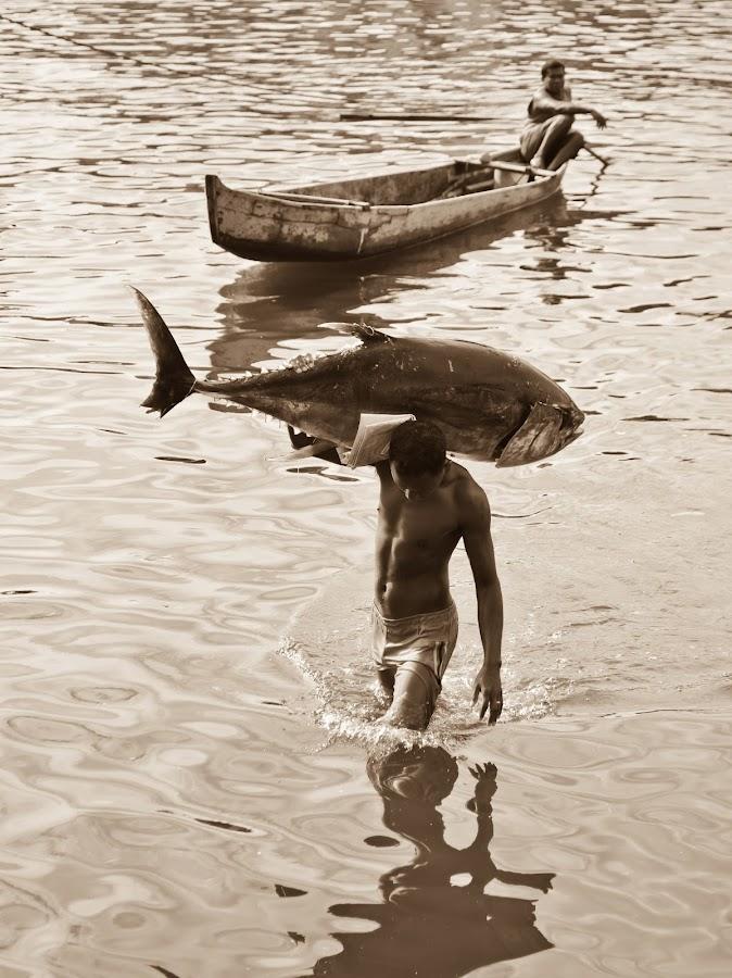 Big Tuna by Ivan Alexander Panungkelan - News & Events World Events