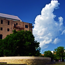 Survivor Tree and cloud by Clarence Hagler - City,  Street & Park  Historic Districts ( oklahoma memorial, oklahoma city, oklahoma, survivor tree, cloud )