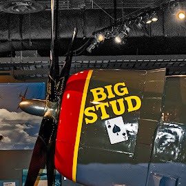 Big Stud by Robert Briggs - Transportation Airplanes ( world war, fighter plane, seattle, big stud, flight museum, military )