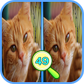 Game Find The Differences 49 APK for Windows Phone