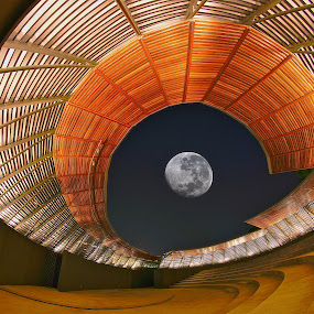 Moon Arena by Sim Kim Seong - Buildings & Architecture Other Exteriors