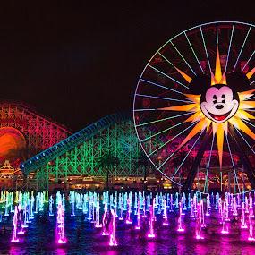 Disney of Color by John M. Larson - City,  Street & Park  Amusement Parks ( water, california adventure, color, disneyland, light, reflect, ferris wheel,  )